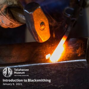 This Saturday, the Tallahassee Museum will hold an Introduction to Blacksmithing class. Work alongside an experienced blacksmith to learn some history and basics of the craft!  Learn more and register here: https://tallahasseemuseum.org/events/introduction-to-blacksmithing-2/  #TallahasseeMuseum #TallahasseeFl #iHeartTally #ExploreFL #LoveFL #Museum #LiveMuseum #BeginningBlacksmith #Blacksmith