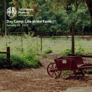 On January 19, the Tallahassee Museum will be hosting a K-5th grade day camp. Campers will learn all about how Floridians lived in the 1880s on a farm!  Learn more and register here: https://tallahasseemuseum.org/events/k-5th-day-camp-life-on-the-farm/  #TallahasseeMuseum #TallahasseeFl #iHeartTally #ExploreFL #LoveFL #Museum #LiveMuseum #DayCamp #FunForKidsTally