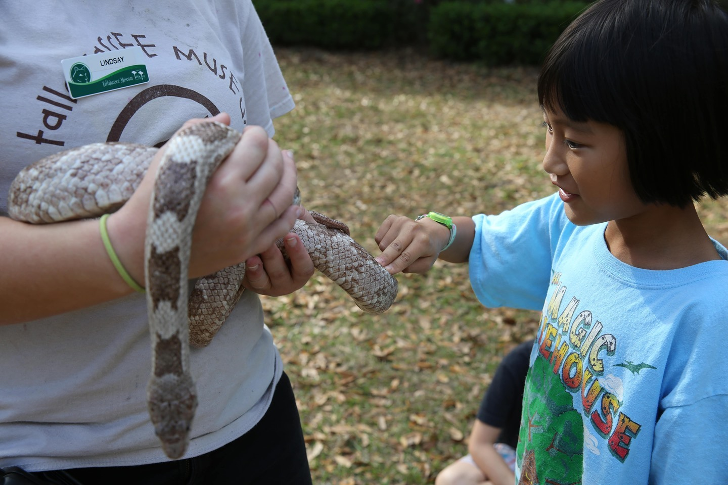 Not only will your campers have fun at the Tallahassee Museum's Summer Camps, but they'll also learn! What could be…